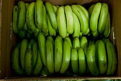 Bananen_Foto: Chris Claes