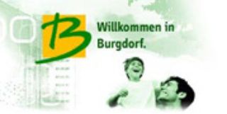 Die Stadt Burgdorf